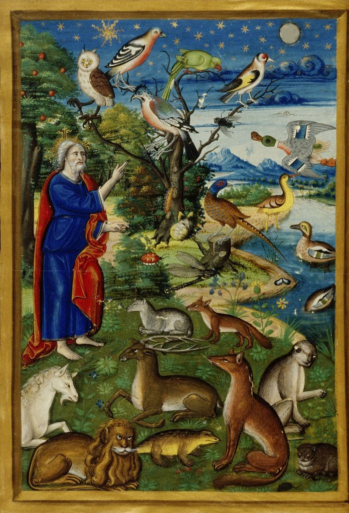 Genesis The creation of the animals dans images sacrée Genesis-The-creation-of-the-animals-including-the-unicorn