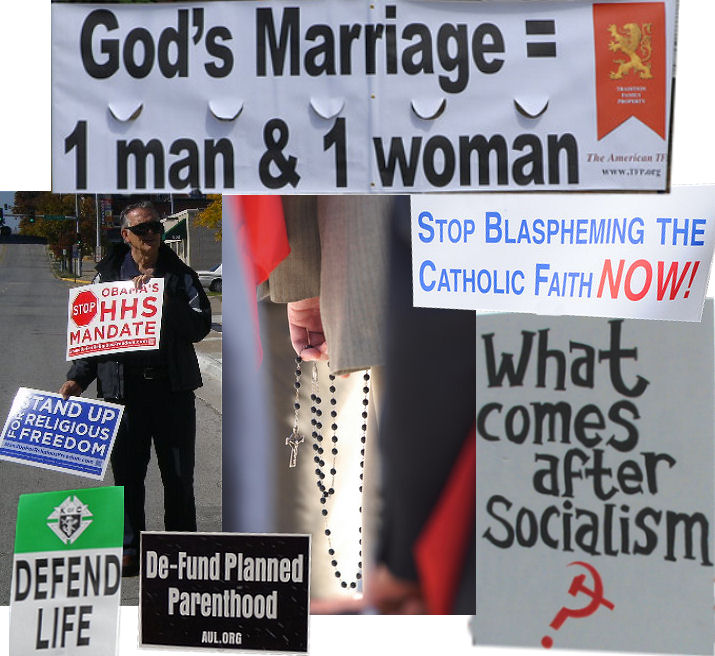 "Traditional Marriage, Pro-Life, Protesting Socialist Health Care Mandates and various Blasphemous plays and ""art work"". Rosary Rallies across this country....this is our Crusade."