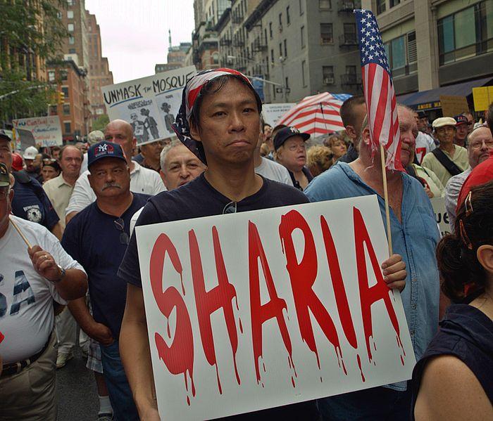 Ground Zero Mosque Protest on August 22, 2010. Photo by David Shankbone.