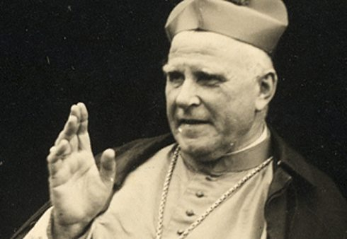 Cardinal Clemens