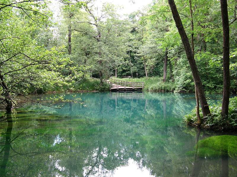 Karst spring of the river Rhume in Lower Saxony, Germany. Photo by Tola69.
